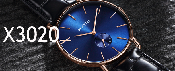 extriwatch X3020